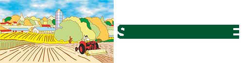 Spazio Verde S.r.l. Logo